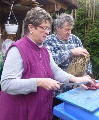 Erste Uhu Fütterung durch Gabi und Bernd Lorenz