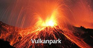 Eine Zeitreise in die Welt der Eifelvulkane im Vulkanpark erfahren!