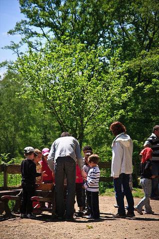 visite de ferme en Limousin : les Ânes de Vassivière