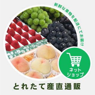 採れたての果物をお届け とれたて産直通販 いちご 桃 ぶどう マスカット