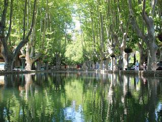 L'étang de Cucuron