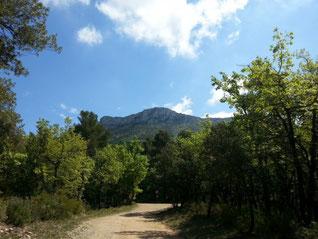 Le mont Arélien vu du point de départ de la randonnée