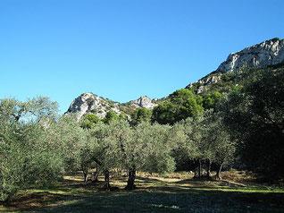 Le mont Menu