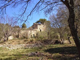 Ruines de la Ferme Petrossi