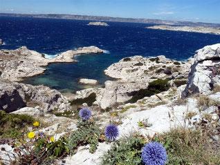 Marseille et le Frioul : 19 juin 2016