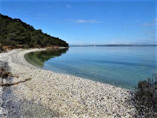 La plage de coquillages