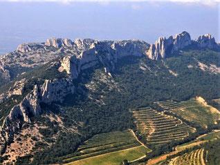 Vignobles, dentelles Sarrasines et Grand Montmirail