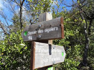 Le Mont Cluyer, les Aiguiers de Travignon : 28 avril 2019