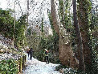 Parc de Saint Pons et la Glacière : 24/02/2013