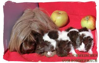 I-Wurf, Cleopatra mit ihren Babys