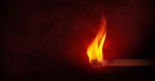 Feuerfuchs; Psychotherapie in Holzwickede
