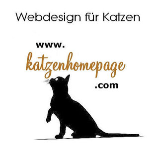 Kostenlose Katzen Homepage Mit Gratis Vorlage Rassekatzen