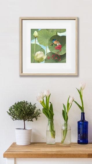 illustration de Timeliot- Lotus