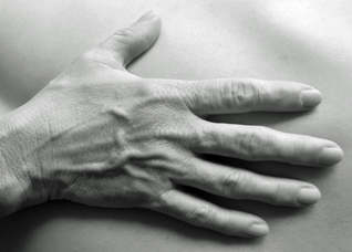 Rosen-Methode Körperarbeit, Manuela Dreßel