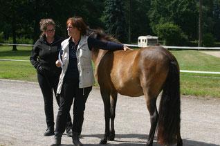 Zuchtseminar mit Barbara Frische (Foto: A. Klingelhöfer)