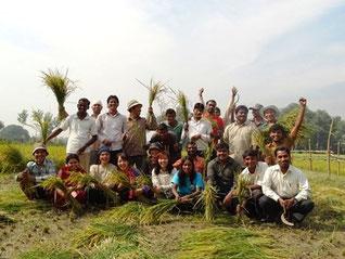 農村リーダーを目指す学生たちによる日本米の稲刈り後の様子