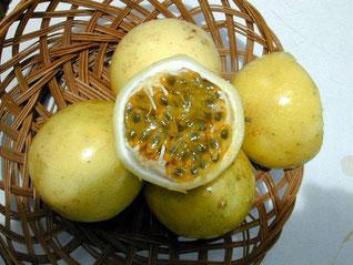 Passion o Frutto della passione (Passiflora Edulis)