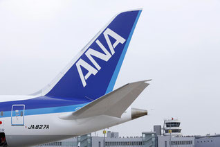 Japanese carrier All Nippon Airways will become LH Cargo's new ally in air freight  /  source: DUS Airport