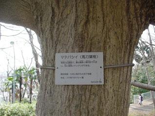 夢見ヶ崎公園の樹木に設置された案内板