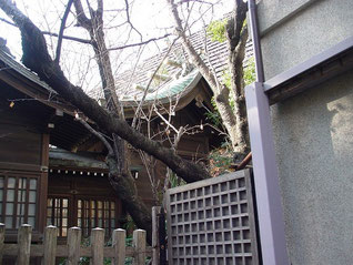 西久保八幡神社の本殿