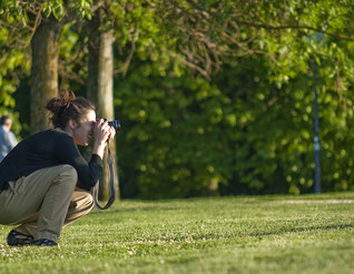 Hochzeit, Fotograf, Profi