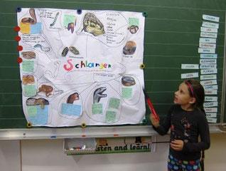 """Ich habe für mein Referat das Thema """"SCHLANGEN"""" gewählt, weil Schlangen meine Lieblingstiere sind."""