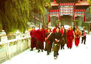 grölend kamen mir die einfachen tibetischen Pilger entgegen