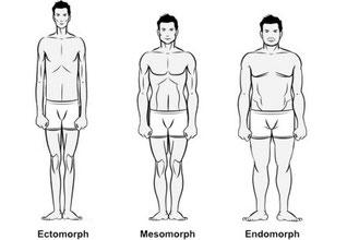 Endomorph