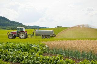 landwirtschaftliche fläche kaufen