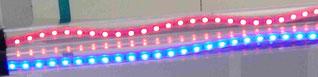 LED Streifen günstig Licht billig Alternativ