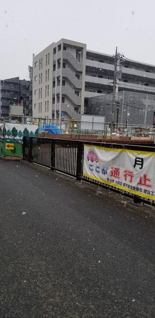 雪降ってる、東京
