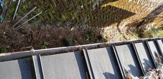 軒先にも落ち葉がたまって水の流れを阻害している