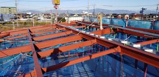屋根葺き前の鉄骨。梁だけ
