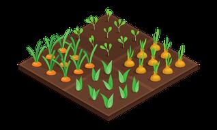 Garten mit vier Beeten