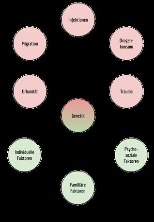 Zusammenspiel von Risiko- (rot) und Schutzfaktoren (grün).