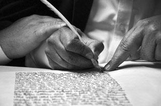 testamentos olografos perito caligrafo