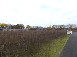 Zuhausebau Baugrundstück in Tostedt Norden Haus