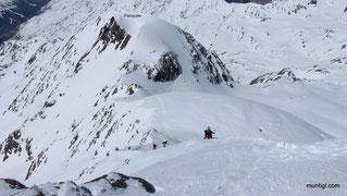 Blick vom Cevedale zum Gipfelgrat