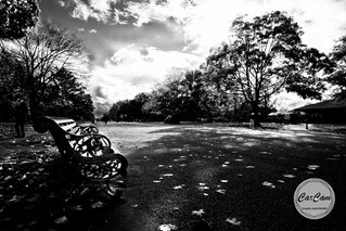 Hyde Park, londres, photo noir et blanc, art, street photography, CarCam