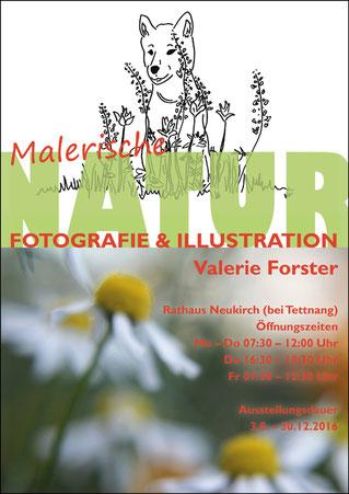 Valerie Forster, Ausstellung, Malerische NATUR