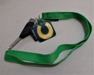 Schlüsselanhänger schlicht und Schlüsselbändel farbig