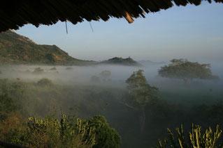Safari in Kenia in den Tsavo West zur Rhino Valley Lodge