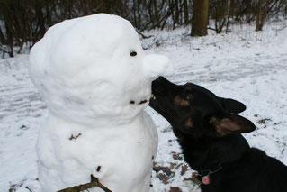 Ares mit Schneemann