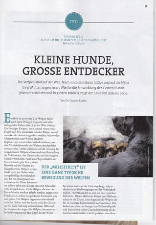B-Wurf von Zollverein, SV-Zeitung 04/16, S.9