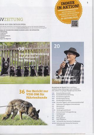 B-Wurf von Zollverein, SV-Zeitung 04/16, S.5
