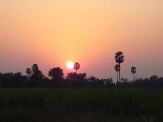 大地に沈む太陽