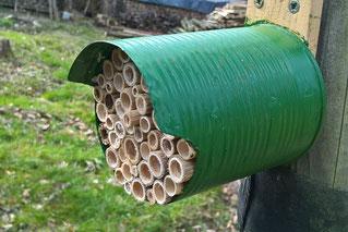 Eine leere Blechdose wurde mit Schilf gefüllt zum Insektenhotel (Foto: Roland Steinwarz)