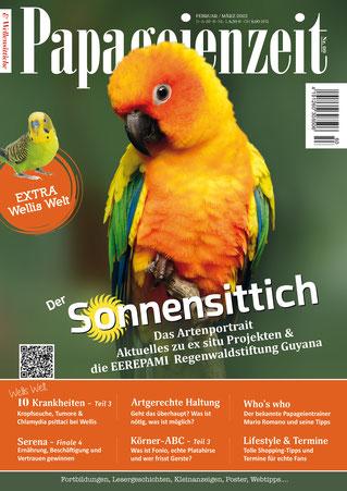 der Nymphensittich ziert das Cover der Papageienzeit 58 und Titelthema ist: Antibiotikaverbot