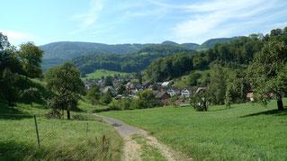 Blick auf Reigoldswil