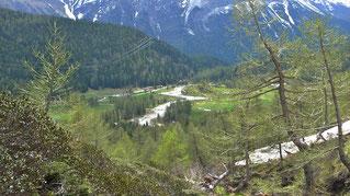 Blick auf Cavaglia